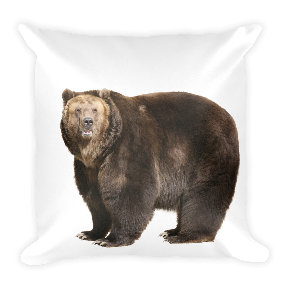 Brown-Bear Print Square Pillow