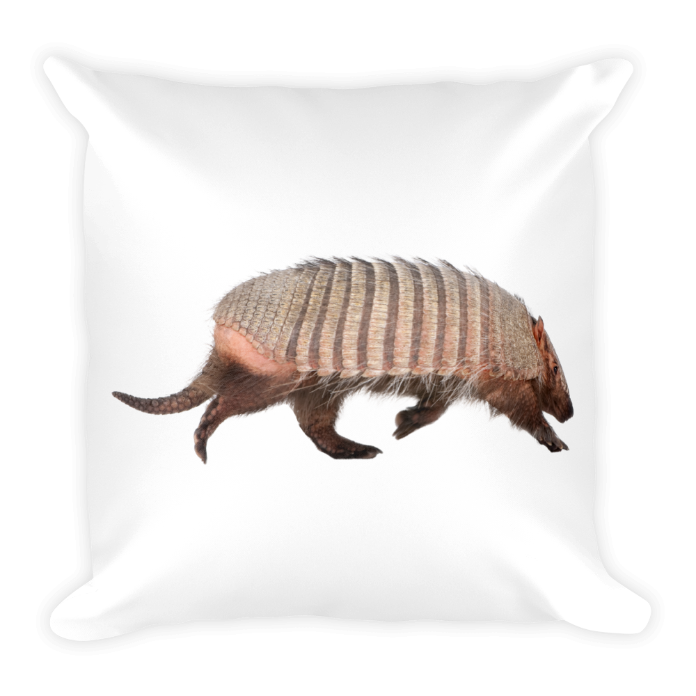Armadillo Print Square Pillow