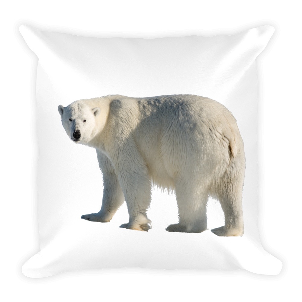 Polar-Bear Print Square Pillow