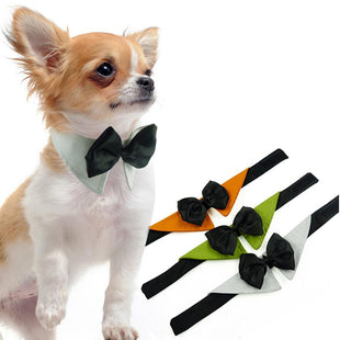 Pacific Pike -  Butterfly Bow Tie Pet Necklace  -  White / S  -