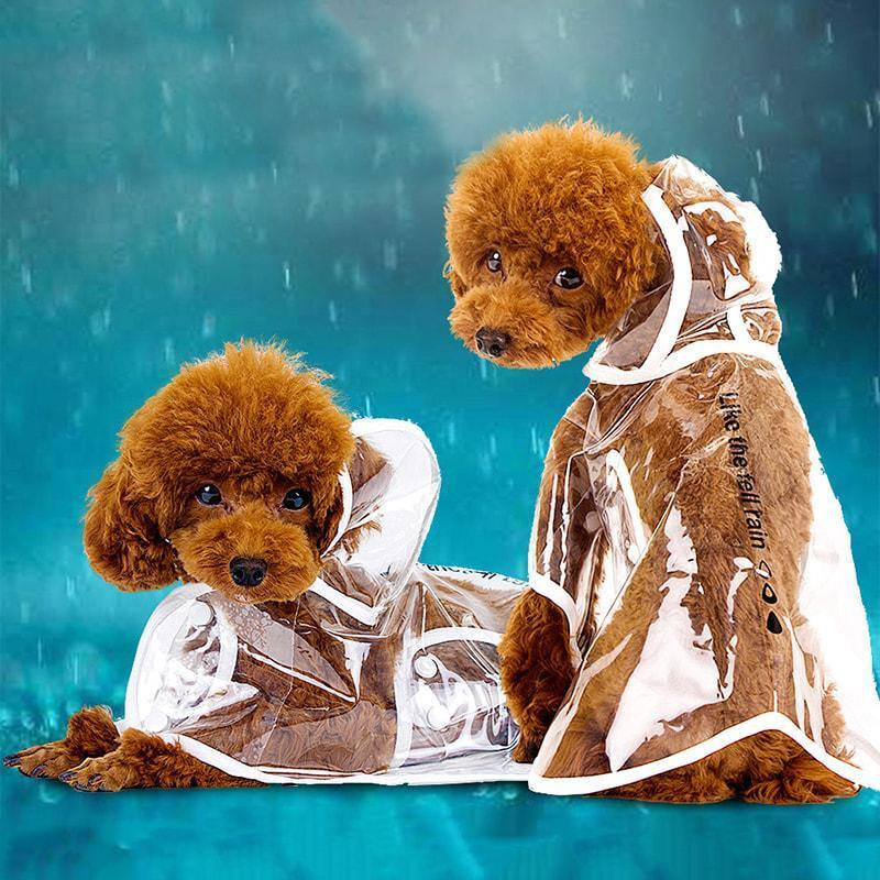 Pacific Pike -  Dog Raincoat  -  XS  -  Pets