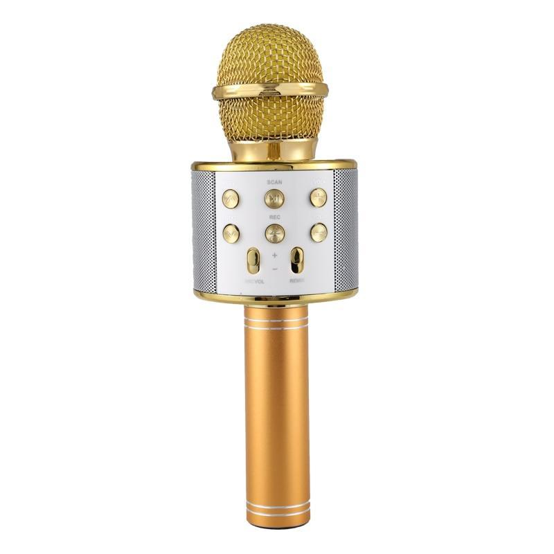 Pacific Pike -  Wireless Bluetooth Karaoke Microphone FINAL SALE  -  Gold / BUY ONE  -  Hidden
