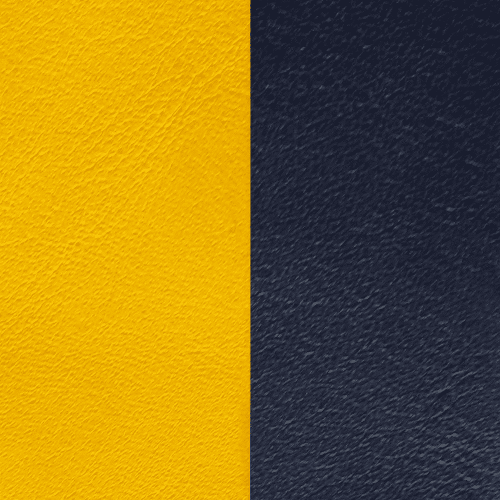 Sun & Navy Leather