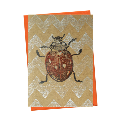 Insect Ladybird Bug Entomology Natural History Blank Card