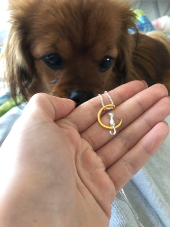 That doesn't look like a doggie necklace mommy!