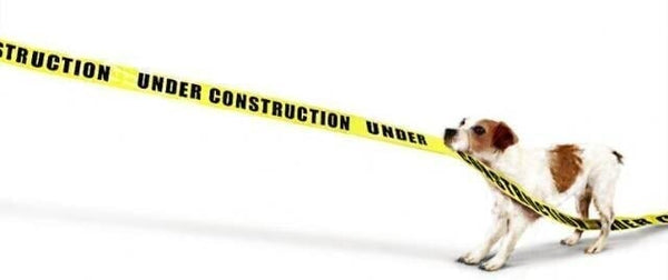 pet kisses dog website construction