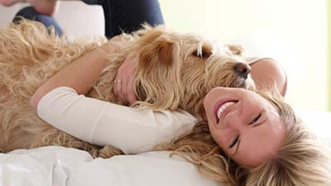 dog laying with woman smiling