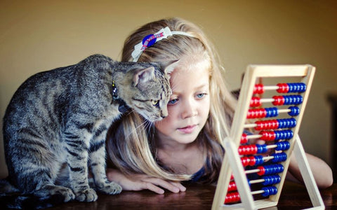 cat teach kid pet kisses