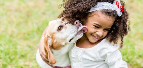 pet kisses dog kid