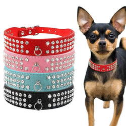 Diamond Rhinestone Suede Leather Collar-collar-Pet Kisses