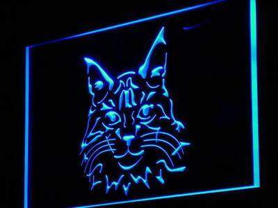 Maine Coon Cat Kitty Display Shop Decor Neon Light Sign-light-Pet Kisses