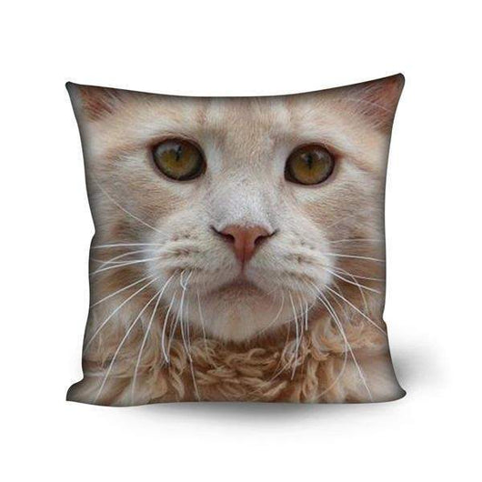 Maine Coon Cat Print Sofa Cushion Covers Home Decorative Square Chair Seat Pillow Case-Pillow-500mm*500mm-H9123DG-Pet Kisses