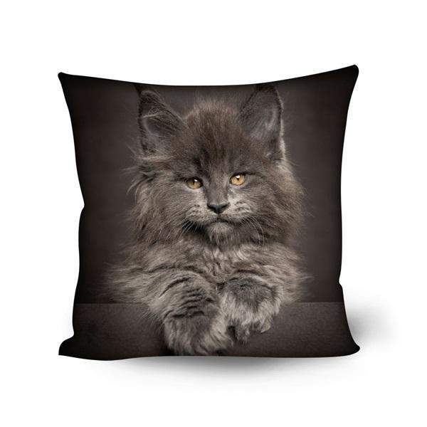 Maine Coon Cat Print Sofa Cushion Covers Home Decorative Square Chair Seat Pillow Case-Pillow-500mm*500mm-H9124DG-Pet Kisses
