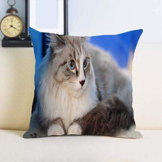 Single Side Printing Cat Pillow Cover-Pillow-style2-14x14inch-Pet Kisses