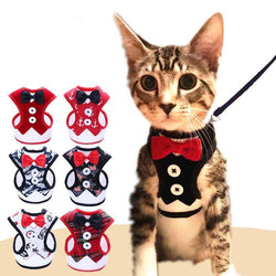 Tuxedo Bow Tie Jacket + Leash Set-leash-Pet Kisses