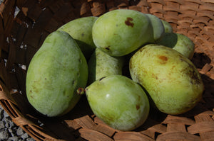 Do you know what a pawpaw is?