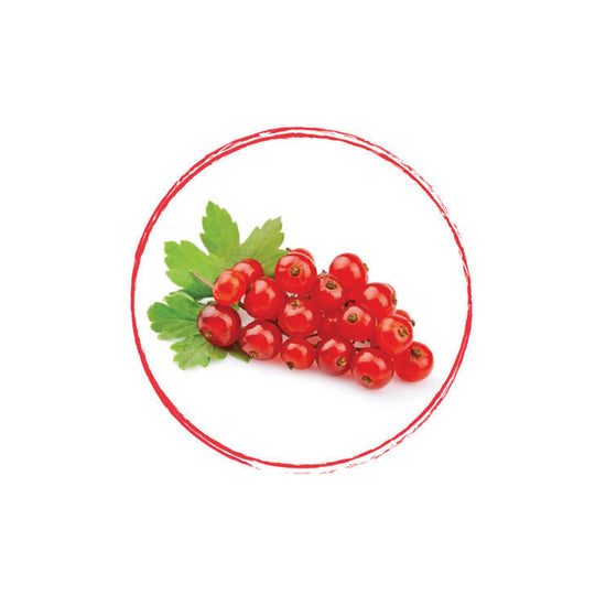 Red Currant Whole