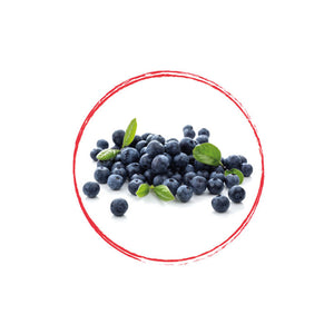Wild Blueberry Whole