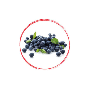 Cultivated Blueberry Whole