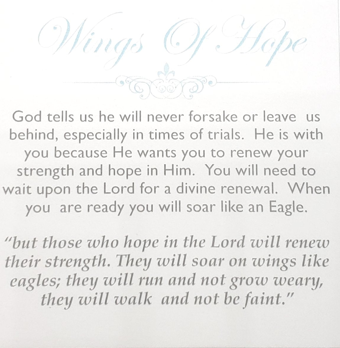 Wings of Hope (limited)