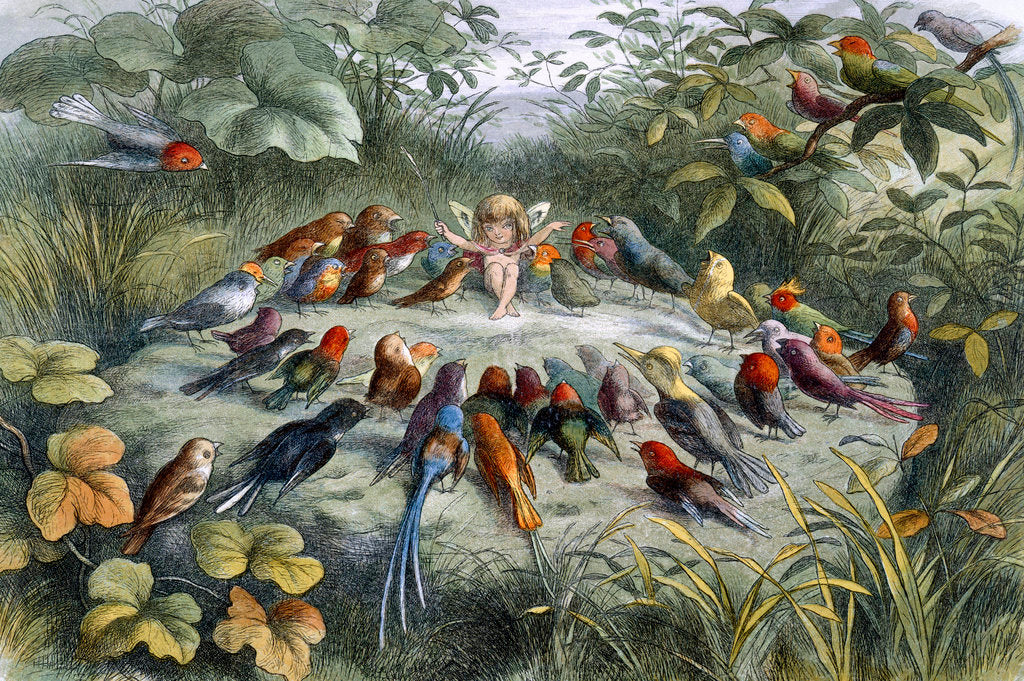 Detail of An elf conducts an orchestra of birds by Richard Doyle
