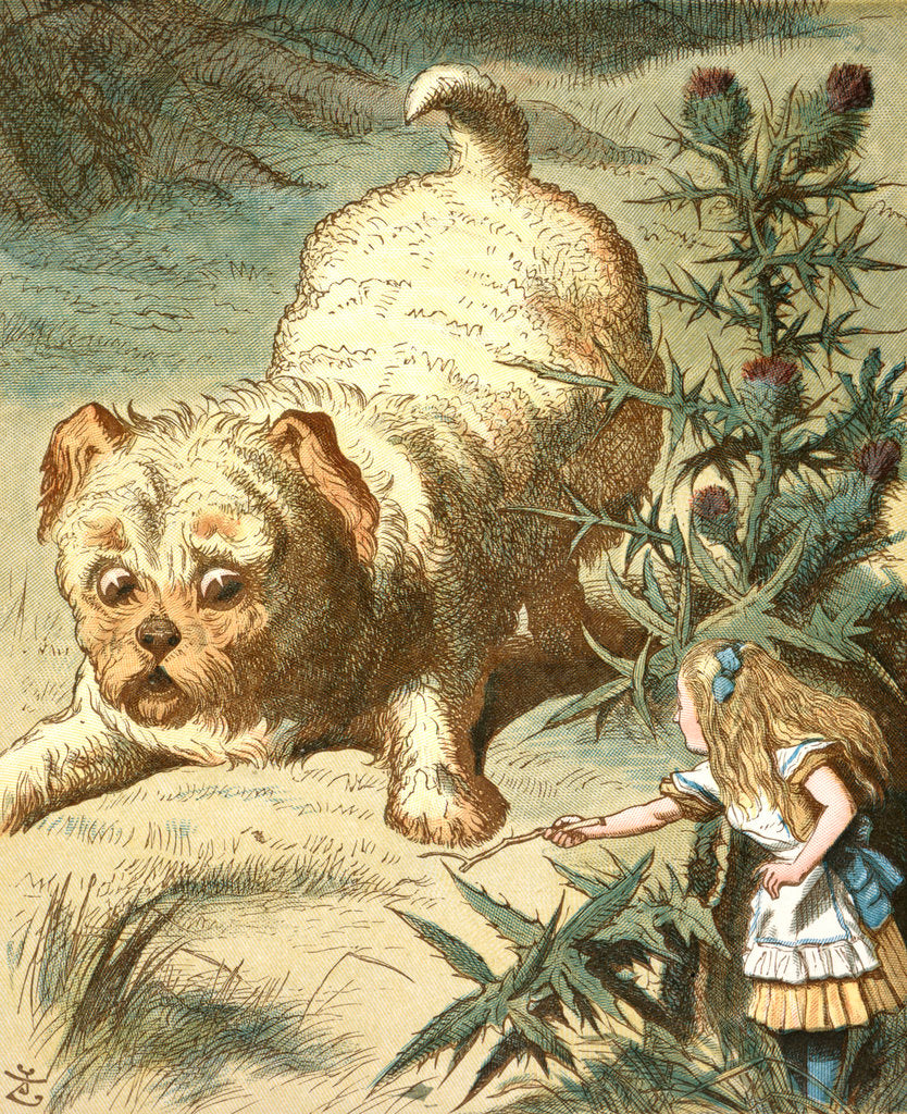 Detail of Dash the puppy by Sir John Tenniel