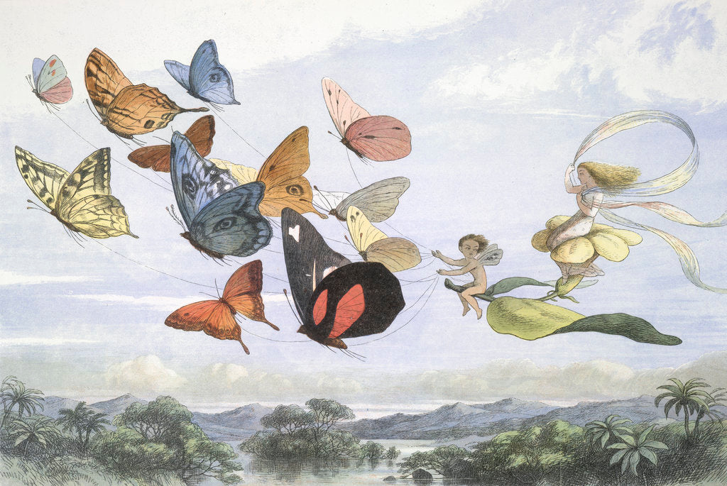 Detail of The Fairy Queen by Richard Doyle