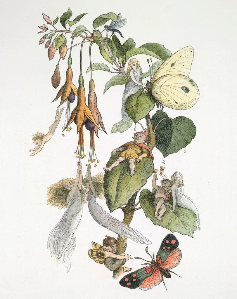 Detail of Feasting and fun among the fuschias by Richard Doyle