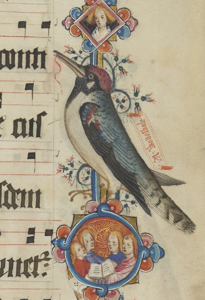 Detail of Woodpecker detail from the Sherborne Missal by John Siferwas