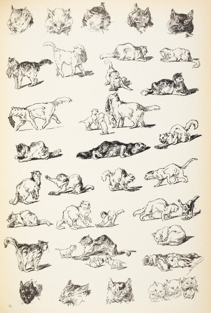 Detail of Sketches of cats by Theophile-Alexandre Steinlein