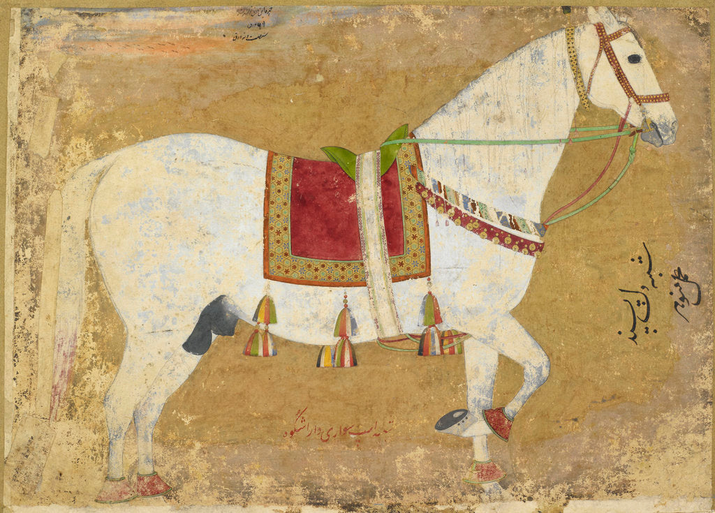 Detail of Dara Shikoh's horse by Manohar