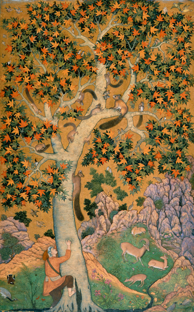 Detail of Squirrels in a plane tree by Abu'l Hasan