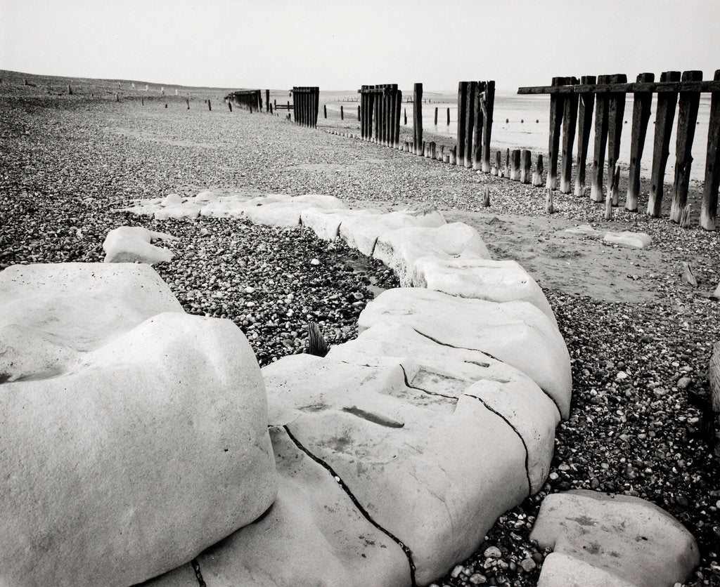 Detail of Groynes and older stone groynes by Fay Godwin