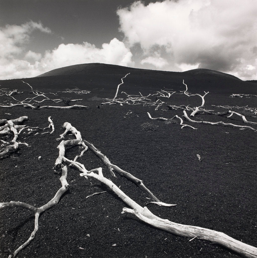 Detail of Devastation Hill by Fay Godwin