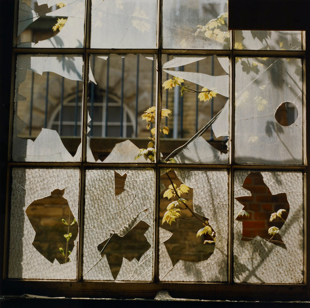 Detail of Broken window by Fay Godwin