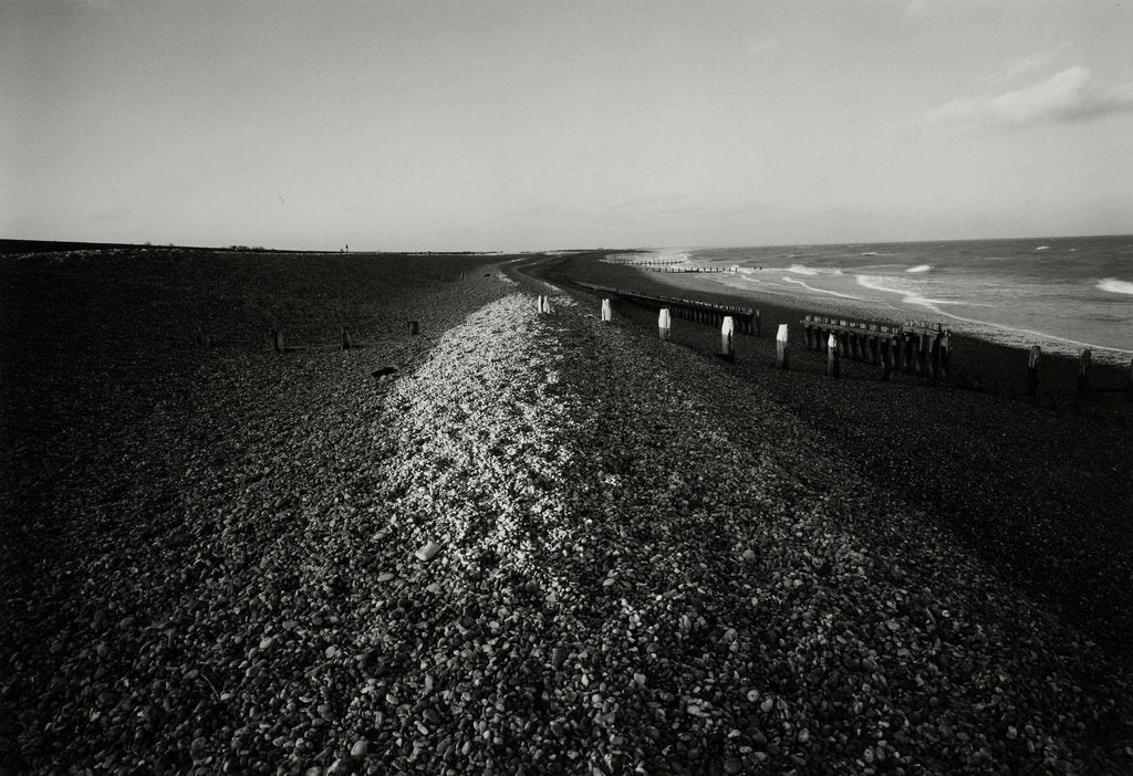 Detail of Shingle beach by Fay Godwin