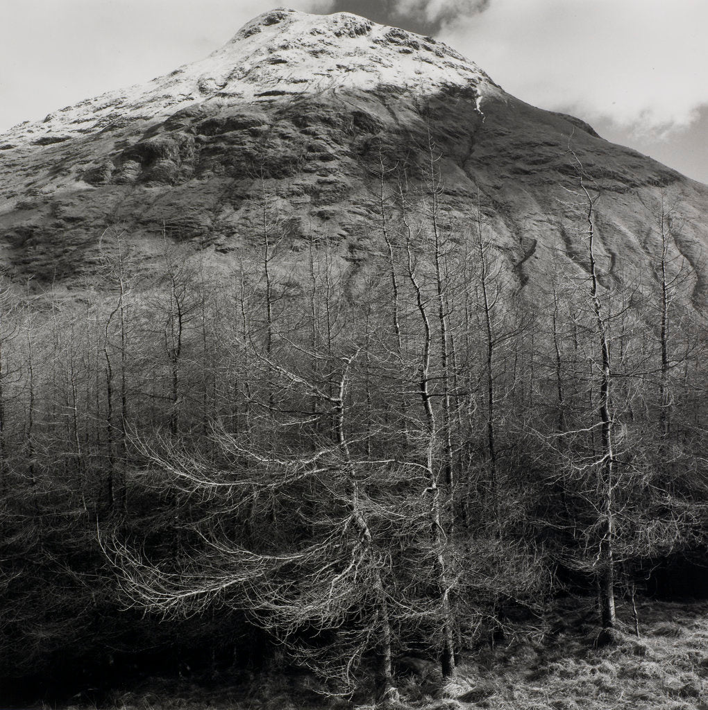 Detail of Stob Dubh by Fay Godwin