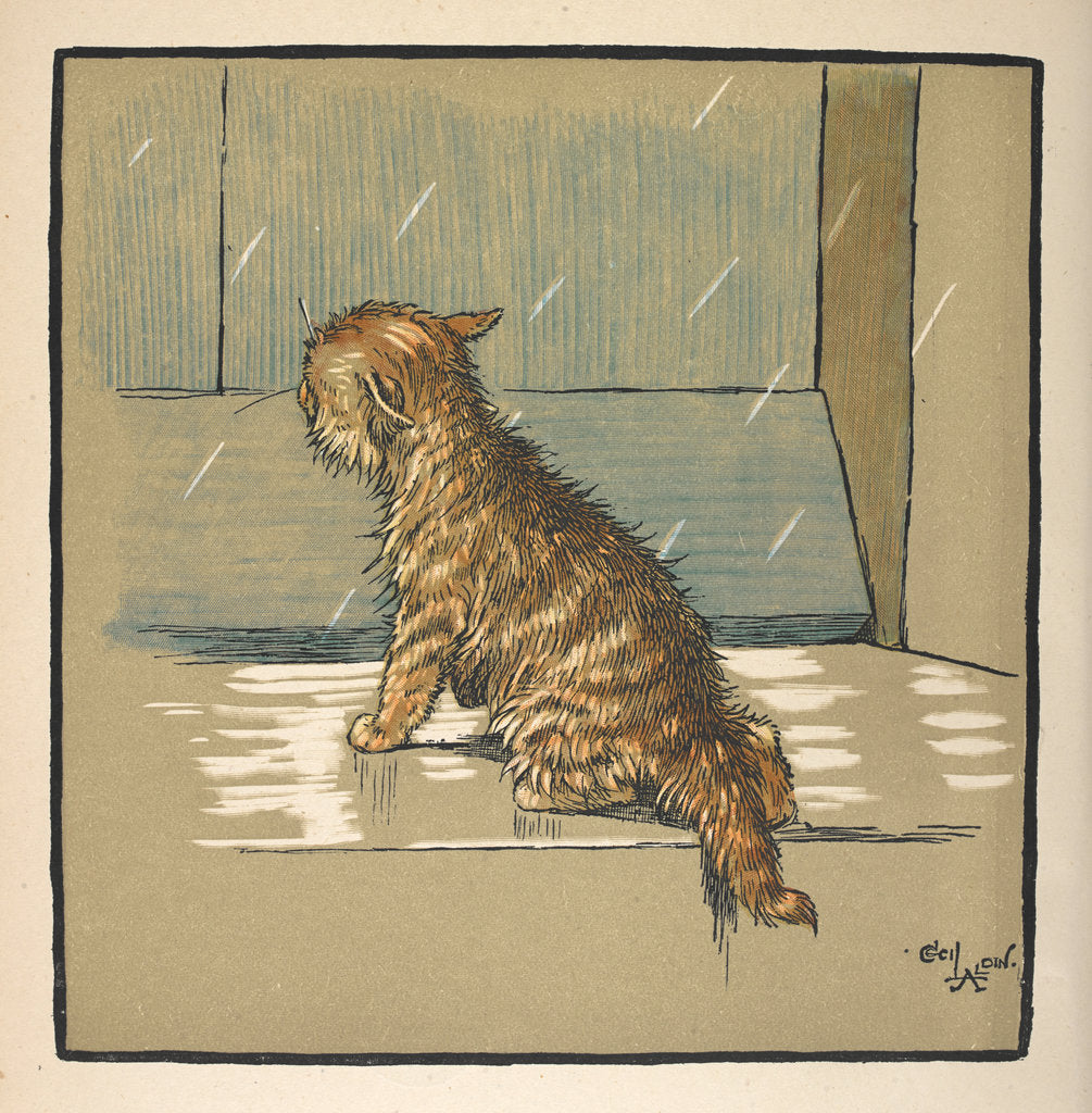 Detail of Kitten out in the rain by Cecil Aldin