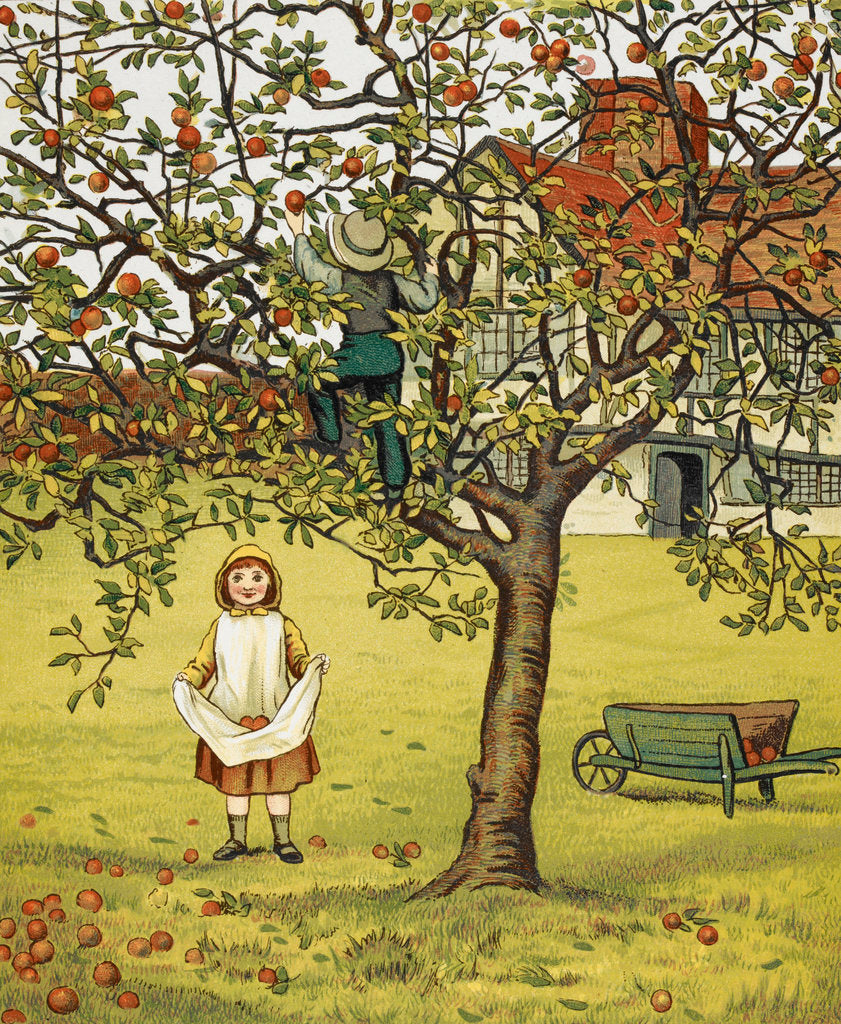 Detail of Apple picking by J G Sowerby