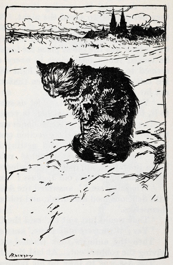 Detail of A cat by Arthur Rackham