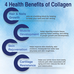 CollagenC Hydrolysate with  Biotin - 60 capsules bottle - 4 Pack