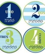 Spanish Blue & Green Circles Month Stickers