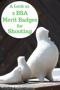 A Look at 2 BSA Merit Badges for Shooting