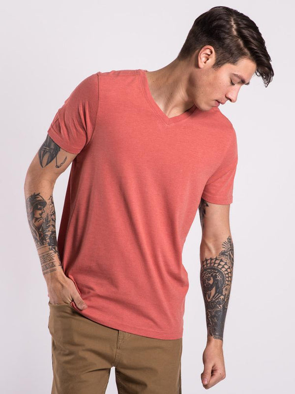 MENS BASIC VNECK - APRICOT
