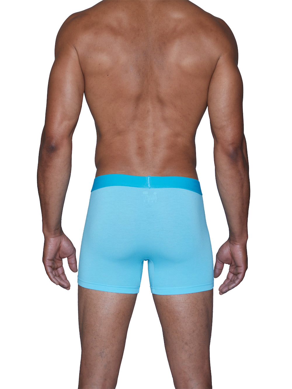 BOXER BRIEF W/FLY - SKY