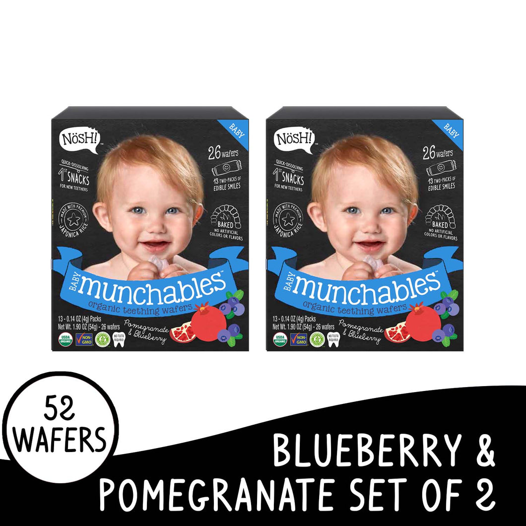 Nosh Baby Munchables Blueberry set of 2