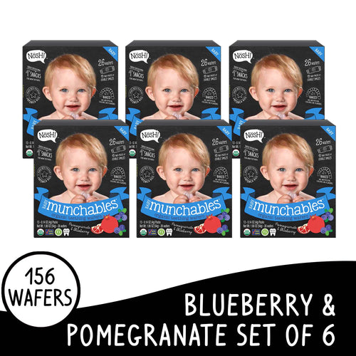 Nosh Baby Munchables Blueberry Pomegranate Box of 6
