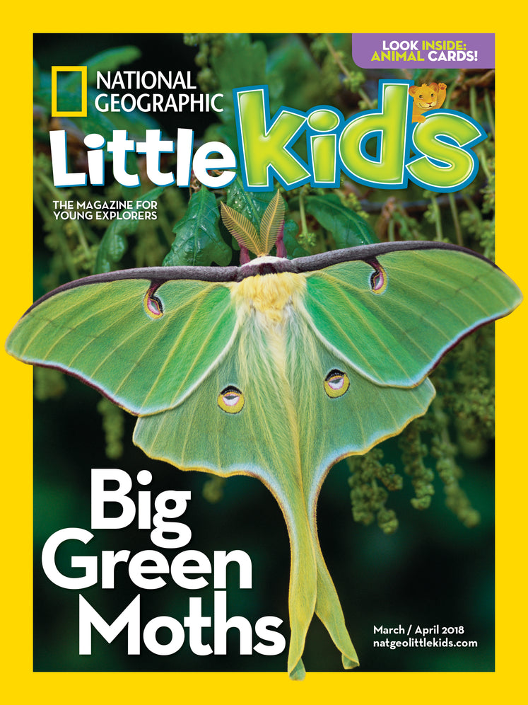 National Geographic Little Kids | Shop National Geographic