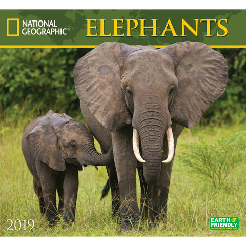 National Geographic Elephants 2019 Calendar