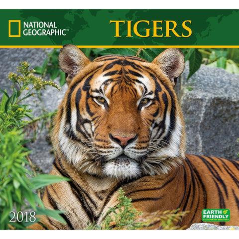 National Geographic Tigers 2019 Calendar